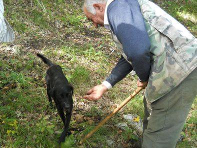 italy-truffle-hunt