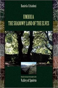 Cover The Shadowy Land of the Elves